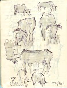 Sketch 6